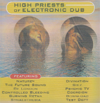 Various Artists / Sampler High Priests Of Electronic Dub CD 120356
