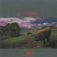 Fury In The Slaughterhouse Jau CD 566869