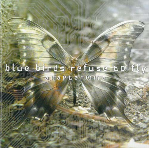 Blue Birds Refuse To Fly Anapteroma CD 569418